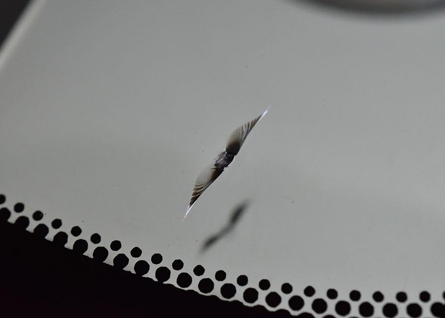 C-HR フロントガラスリペア