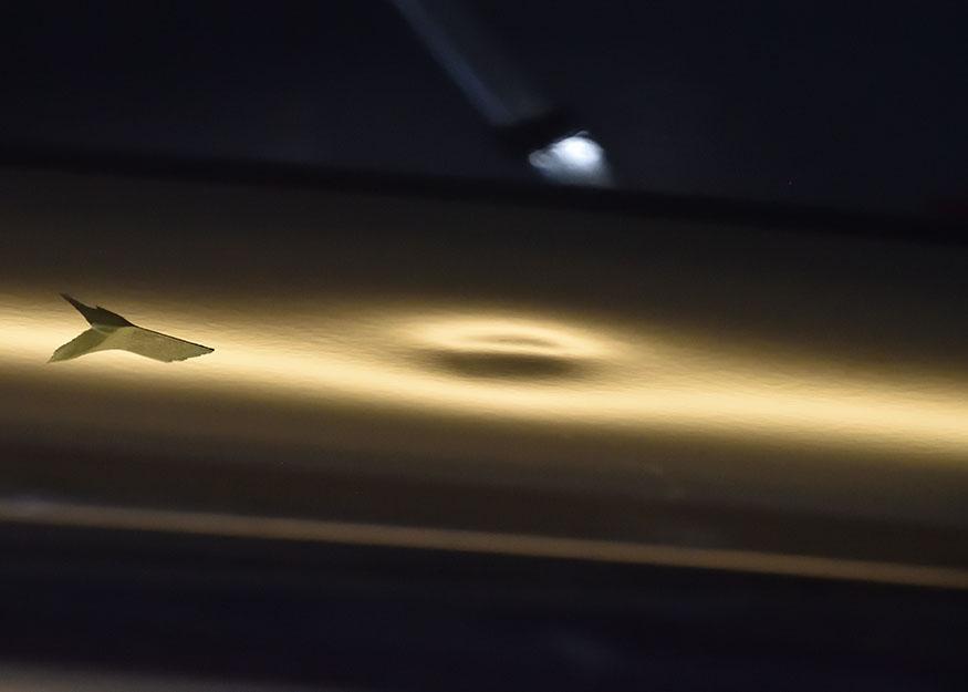 ステップワゴン デントリペア